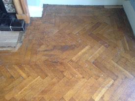 Wood Floor Lincoln