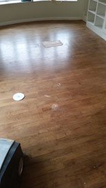 Wood Floors Hull
