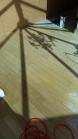Floor Sanded Bradford